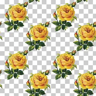 Flower Bouquet Garden Roses Floral Design Cut Flowers PNG