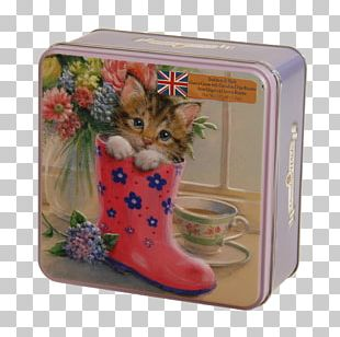 Post Box Biscuit Tin Decorative Box Kitten PNG