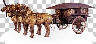 Terracotta Army Mausoleum Of The First Qin Emperor Emperor Of China Qin Bronze Chariot PNG