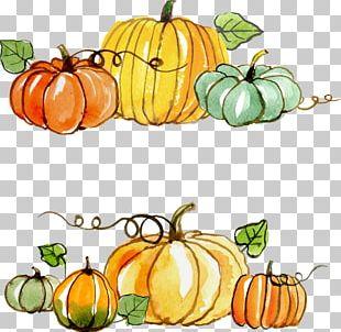 Thanksgiving Gratitude Gift PNG