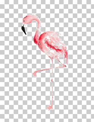 Flamingo Watercolor Painting Drawing PNG