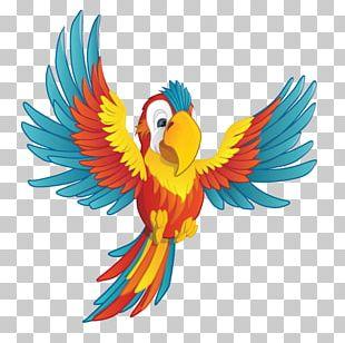 Bird Perroquet Macaw Beak Sticker PNG
