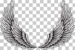 Tattoo Wing Illustration PNG