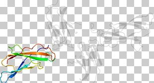 Drawing Graphic Design PNG