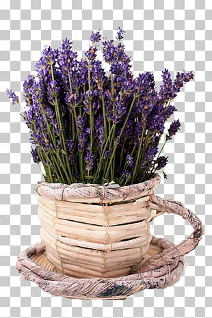 Lavender Birthday Gift Flower Bouquet Wedding Anniversary PNG