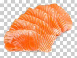 Salmon Sashimi Sushi Food Fish PNG