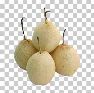 Fruit Williams Pear Pome Calorie PNG