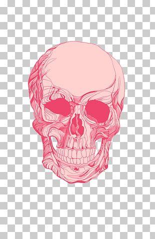Art Human Skull Symbolism Printmaking PNG