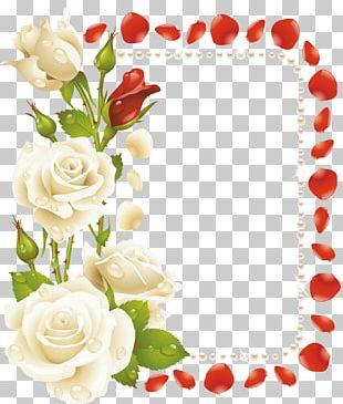 Garden Roses Frames Floral Design Flower PNG