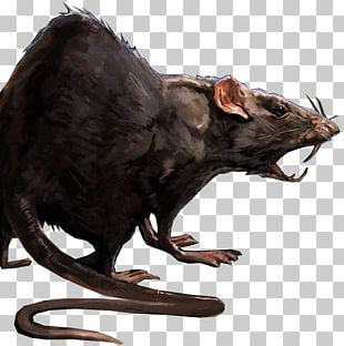 Dishonored 2 Laboratory Rat Mouse PNG