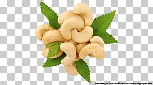 Roasted Cashews Tree Nut Allergy Food PNG