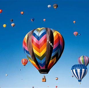 Flight Napa Ocala Hot Air Balloon PNG