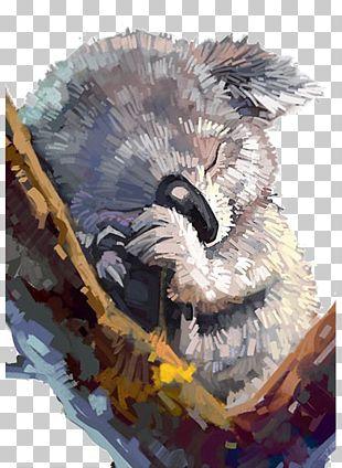 Koala Painting Drawing Art Illustration PNG