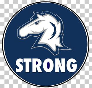 Hillsdale College Minnesota Vikings Hillsdale Chargers Football Lake Erie College PNG