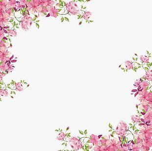 Flowers Borders PNG