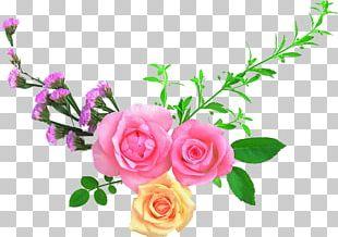 Flower Garden Roses Desktop Floral Design PNG