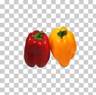 Habanero Bell Pepper Vegetable Chili Pepper Fruit PNG
