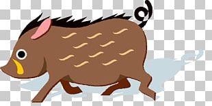 Domestic Pig Deer Meat Food Mammal PNG