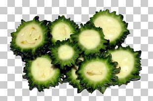 Bitter Melon Leaf Vegetable Fruit PNG