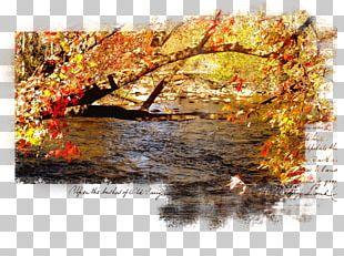 Desktop Autumn Landscape Spring PNG