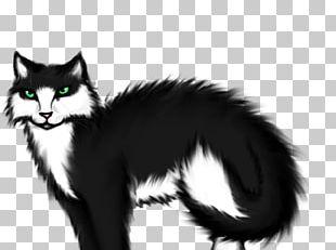 Whiskers Norwegian Forest Cat Kitten Domestic Short-haired Cat Black Cat PNG
