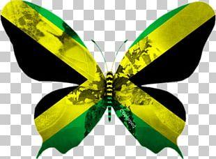 Flag Of Jamaica National Emblem Croatia: Mižerja PNG