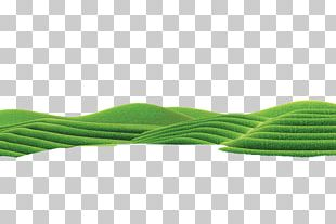 Green Angle Pattern PNG