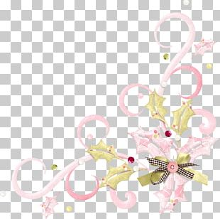 Floral Design Borders And Frames Portable Network Graphics PNG