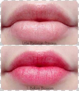 Lip Balm Lip Gloss Lipstick Lip Stain PNG
