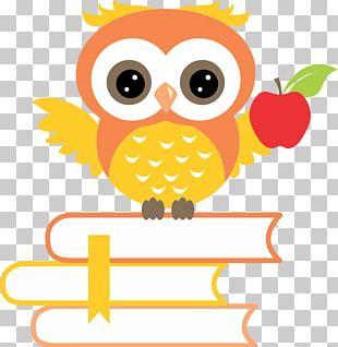 Little Owl Teachers' Day PNG