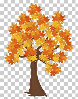 Tree Autumn Maple PNG