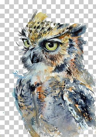Owl Watercolor Painting Drawing Art PNG