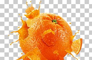 Orange Computer Icons PNG