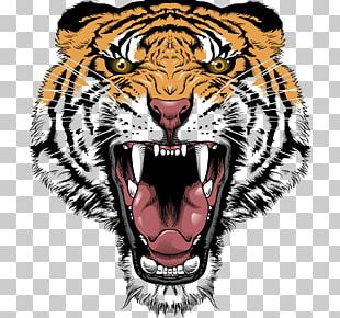 Tiger Lion Roar Big Cat Head PNG
