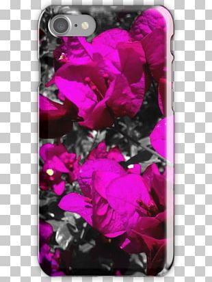 Pink M Mobile Phone Accessories Mobile Phones IPhone PNG