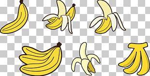 Cooking Banana Fruit Drawing PNG