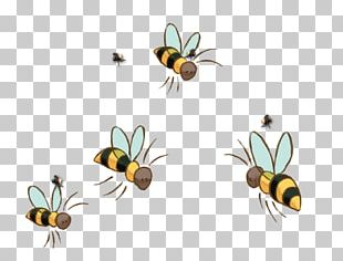 Honey Bee Winnie The Pooh Insect Child PNG