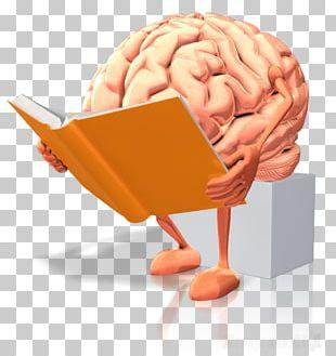Human Brain Dyslexia Reading Brain Rules PNG