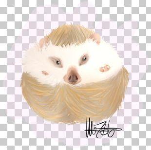 Snout Hedgehog Fur Eyelash PNG