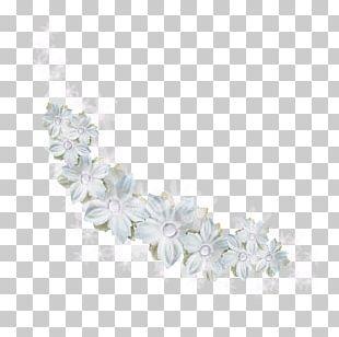 White Flower Petal PNG