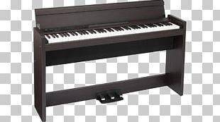 Digital Piano Musical Instruments Keyboard Korg PNG