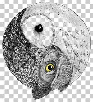 Barred Owl Yin And Yang Bird Barn Owl PNG