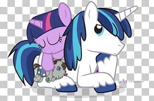 Pony Twilight Sparkle Princess Cadance Fan Art Rainbow Dash PNG