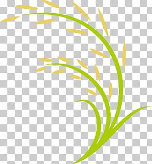 Rice Computer File PNG