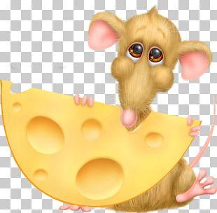 Cheese Drawing Cartoon PNG