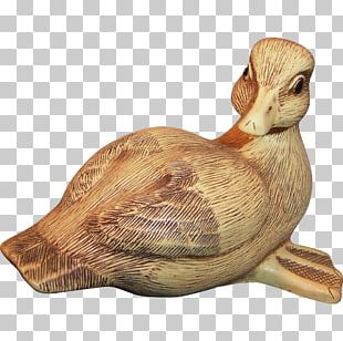 Duck Goose Cygnini Collectable Waterfowl PNG
