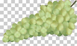 Wine Common Grape Vine Aguas Frescas Grape Juice PNG