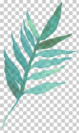 Leaf Watercolor Painting Typography PNG