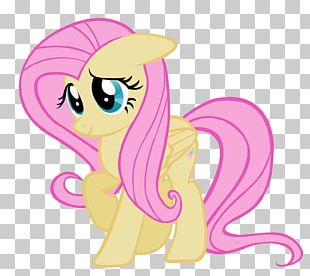 Fluttershy Pinkie Pie Rarity Rainbow Dash Applejack PNG