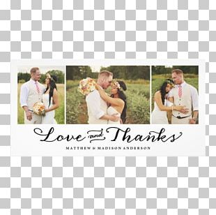 Zazzle Wedding Invitation Marriage Photography PNG